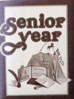 american high school album